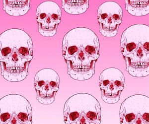 skulls, wallpaper, and fonds image