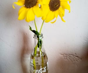 diy, flower, and sunflower image