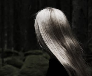 book, forest, and hair image