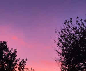 ciel, night, and pink image