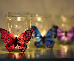 butterfly, light, and pretty image