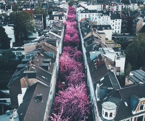 travel, city, and pink image