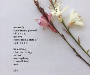aesthetic, flowers, and poetry image