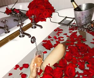 roses, bathroom, and luxury image