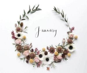 january, flowers, and new year image