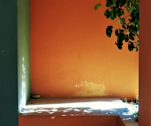 orange, photography, and wall image
