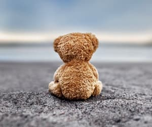 teddy, bear, and alone image