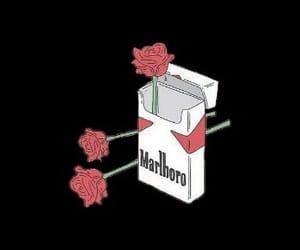 black, cigarette, and cigarettes image