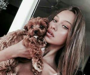 animals, fashion, and cute girls image