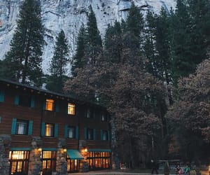 forest, hotel, and yosemite image