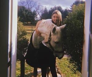 gigi hadid, model, and horse image