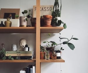 plants, inspiration, and vintage image