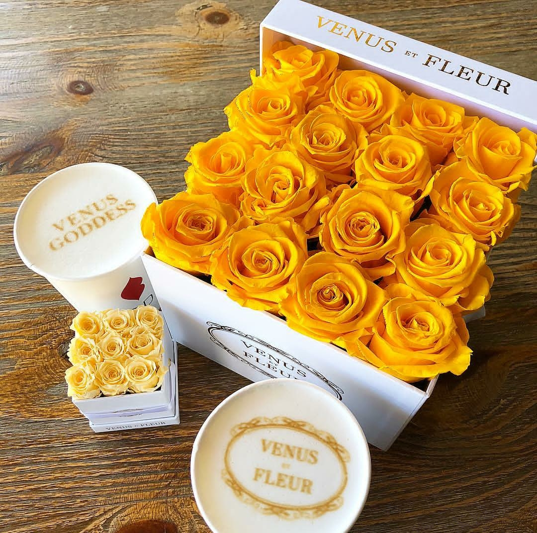 137 Images About Roses On We Heart It See More About Flowers Rose