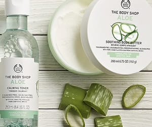 aloe, body, and green image