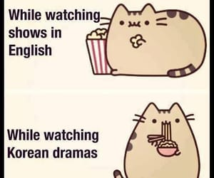 korean, kdrama, and cat image