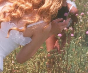 aesthetics, flowers, and dreamy image