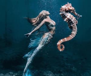 mermaid, beautiful, and fantasy image