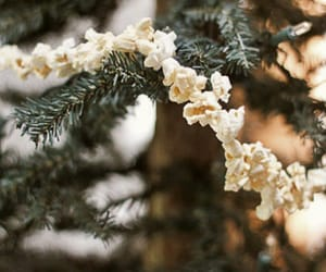 holiday, tree, and love image