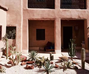 architecture, cactus, and home image