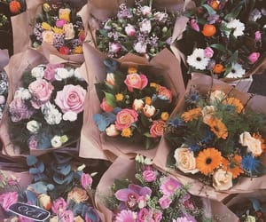flowers, colors, and bouquet image