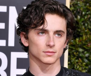 golden globes, timothee chalamet, and handsome image