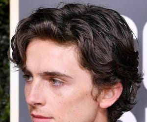 golden globes, timothee chalamet, and hair image