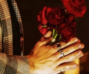 Harry Styles, hands, and rose image