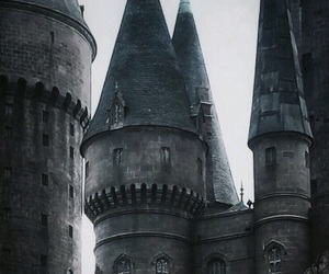 article, hermione granger, and ron weasley image