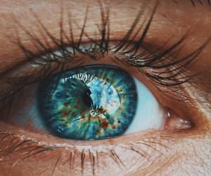 eyes, eye, and photography image