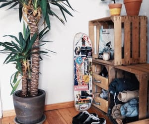 decor, photography, and skateboard image