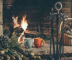 bff, fireplace, and woods image