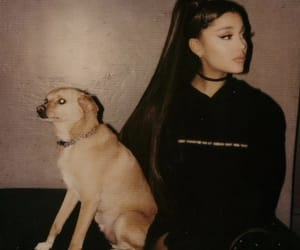ariana grande, ariana, and Toulouse image