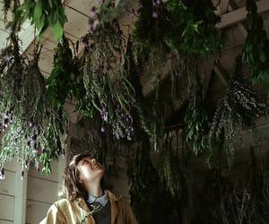 girl, herbs, and plants image
