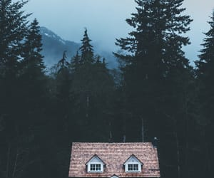 forest, sky, and house image