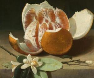 art, nature, and oranges image