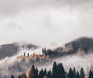 nature, autumn, and wanderlust image
