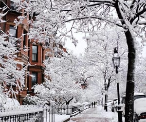 beautiful, snowy, and cold image