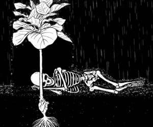 black and white, blanco, and esqueleto image
