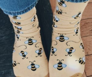 yellow, bee, and socks image