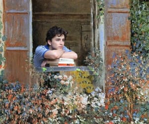 call me by your name, timothee chalamet, and art image