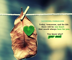 green, hanger, and love quotes image