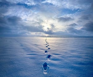 snow, winter, and footprints image