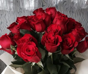 flowers, rose, and cute image