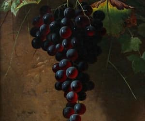 art, fruit, and grape image