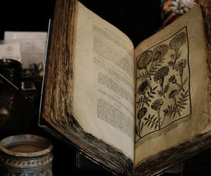 book, old, and magic image