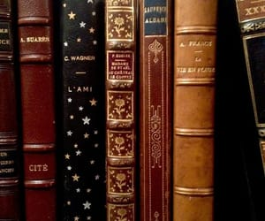 book, aesthetic, and library image