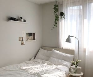 bedroom, plants, and white image