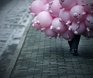 pig, balloons, and pink image