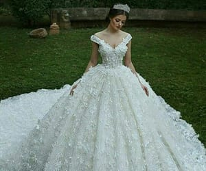 weeding and drees image
