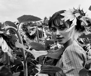 keira knightley, black and white, and sunflower image